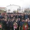 Novigrad 2014.rY 064
