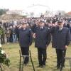 Novigrad 2014.rY 084
