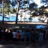 Sveta misa